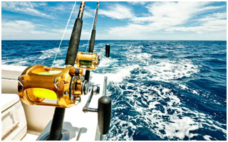 Fernandes Tours and Safaris - Deep Sea Fishing